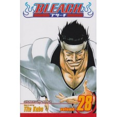 Bleach Vol 28 (TP)