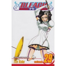 Bleach Vol 29 (TP)
