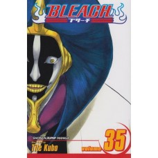 Bleach Vol 35 (TP)