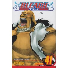 Bleach Vol 41 (TP)