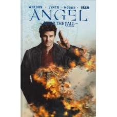 Angel After The Fall Vol 04 (HC)